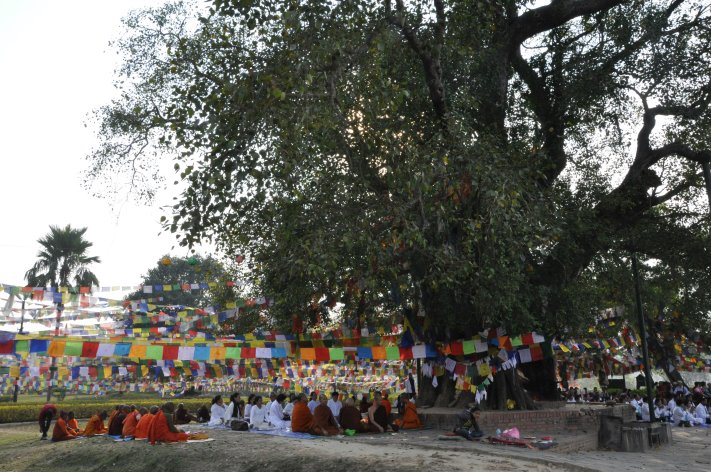 People of different Buddhist traditions praying at Mayadevi Temple