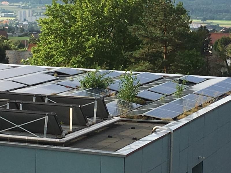 Die Wartung von Photovoltaikanlagen ist für die Effizienz und die Sicherheit wichtig