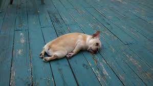 疲れ果てた方にオーダー枕
