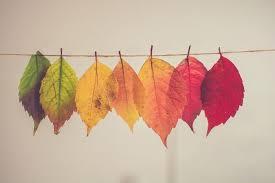 季節の変わり目に体調を崩さないために