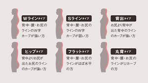 6体型理論