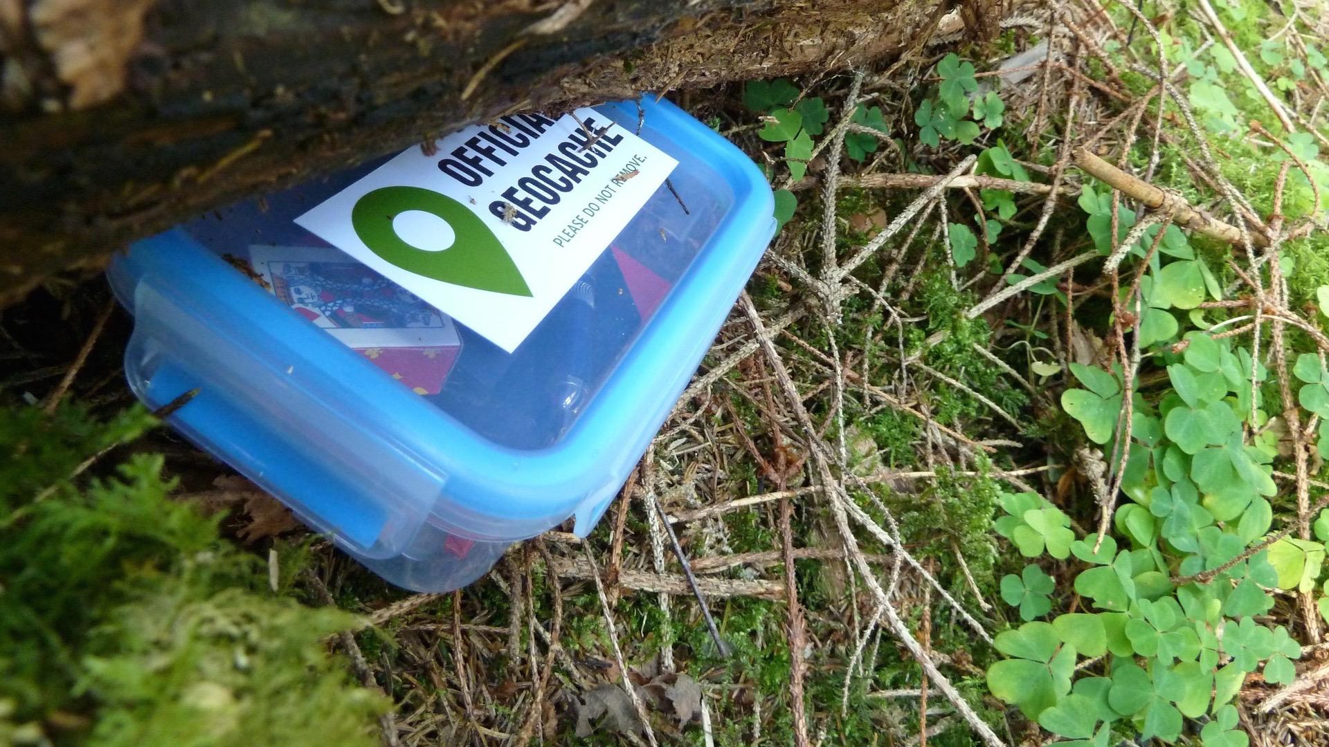 Geocaching und Letterboxing in der Pfalz