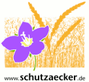 Netzwerk für Ackerwildkräuter