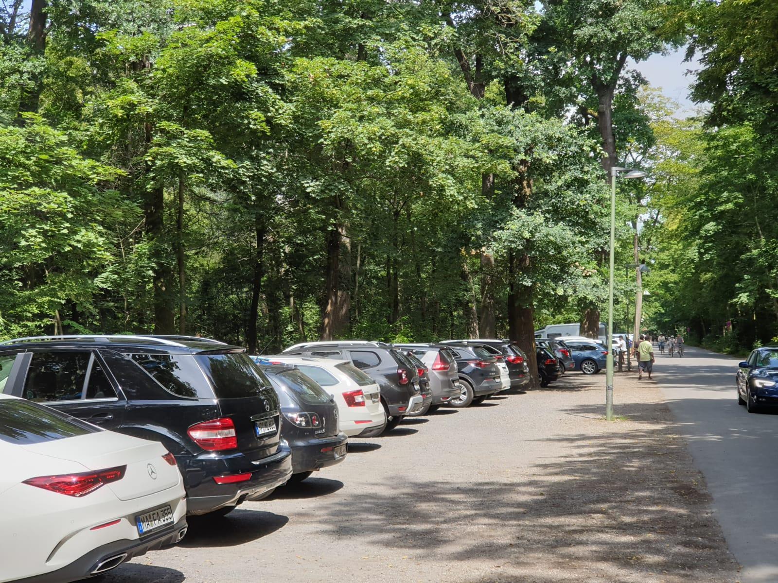 Nutzung des Käfertaler Waldes als Naherholungsgebiet