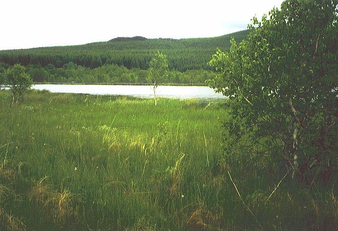 Lac de Chambedaze (Auvergne, Frankreich)