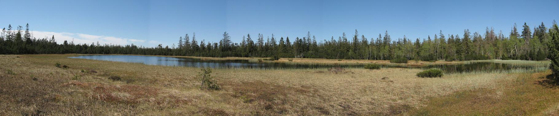 Panorama Hohlohseemoor