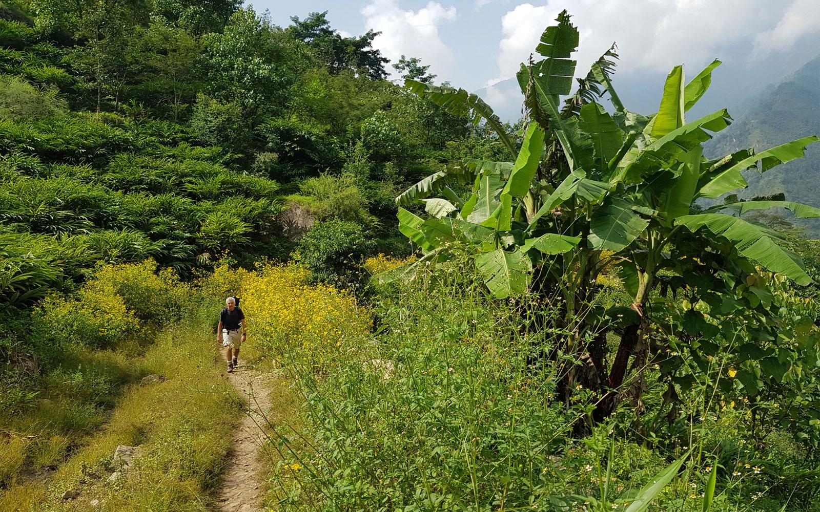 Paysage du trek Lumba Sumba dans le Kangchenjunga au départ
