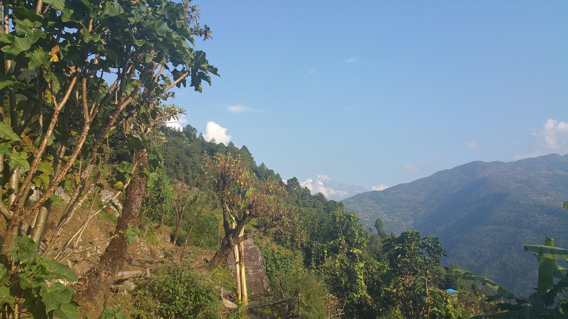 Paysages verdoyants du départ de Phaplu
