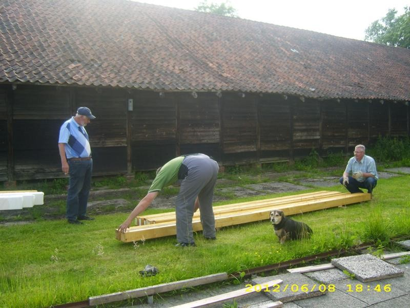 Holzwürmer bei der Arbeit