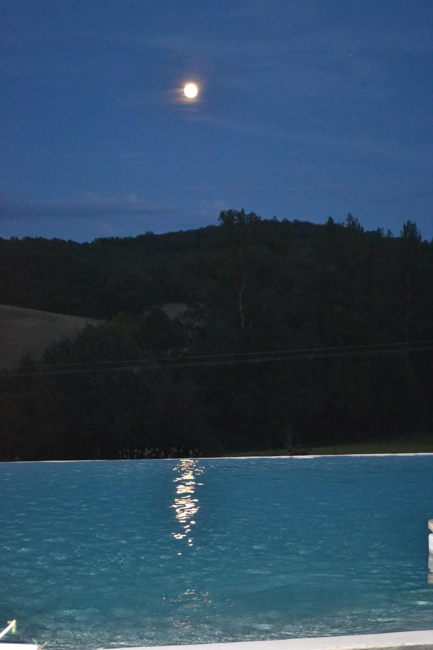La nature environnante, un soir de pleine lune, au-dessus de la piscine, dans la sérénité des belles nuits d'été.