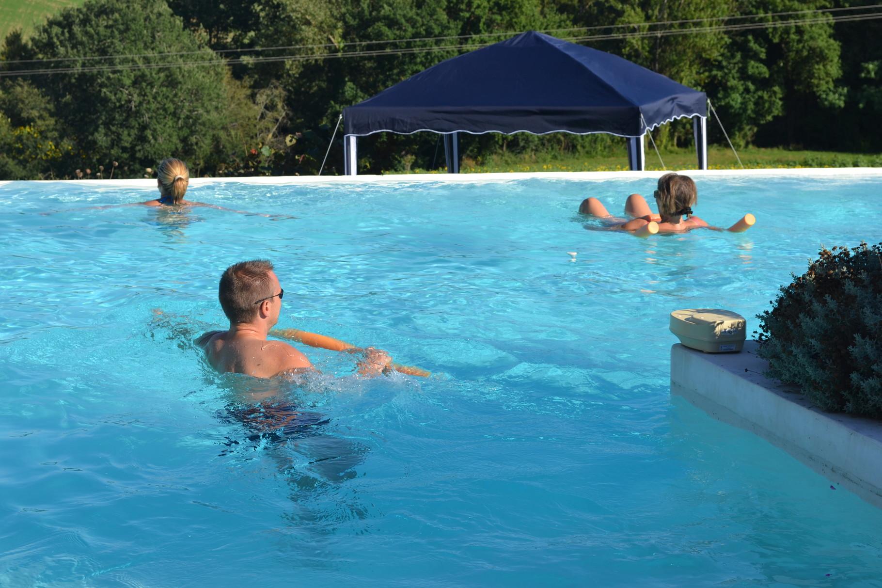 La piscine à débordement, toujours très appréciée pour le plaisir de tous,