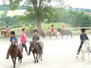 La carrière et le manèges sont vastes et adaptés à toutes les activités équestres