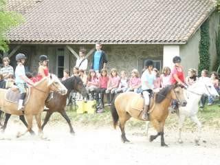 La carrière extérieure, près de l'enclos où les poneys sont rassemblés pour les soins