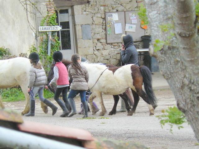 A La Marsale, des poneys, il y en a pour les grands, ... et pour les petits