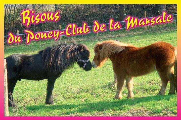 Bienvenue. Le Poney Club est ouvert toute l'année ( sauf Noel et début septembre )