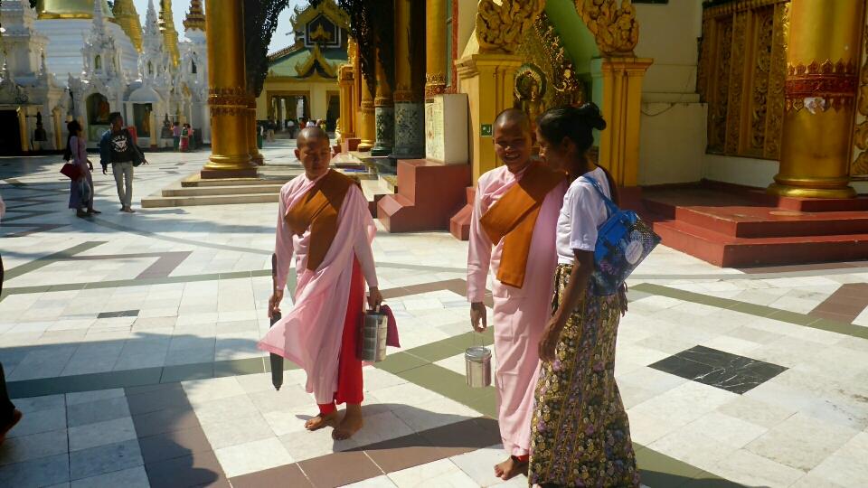 Bhikkhuni - buddhistische Nonnen in ihren rosarbarbenen dreiteiligen Roben (trichivara)