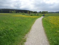 starnbergersee.bayern - Radtour zum Maisinger See