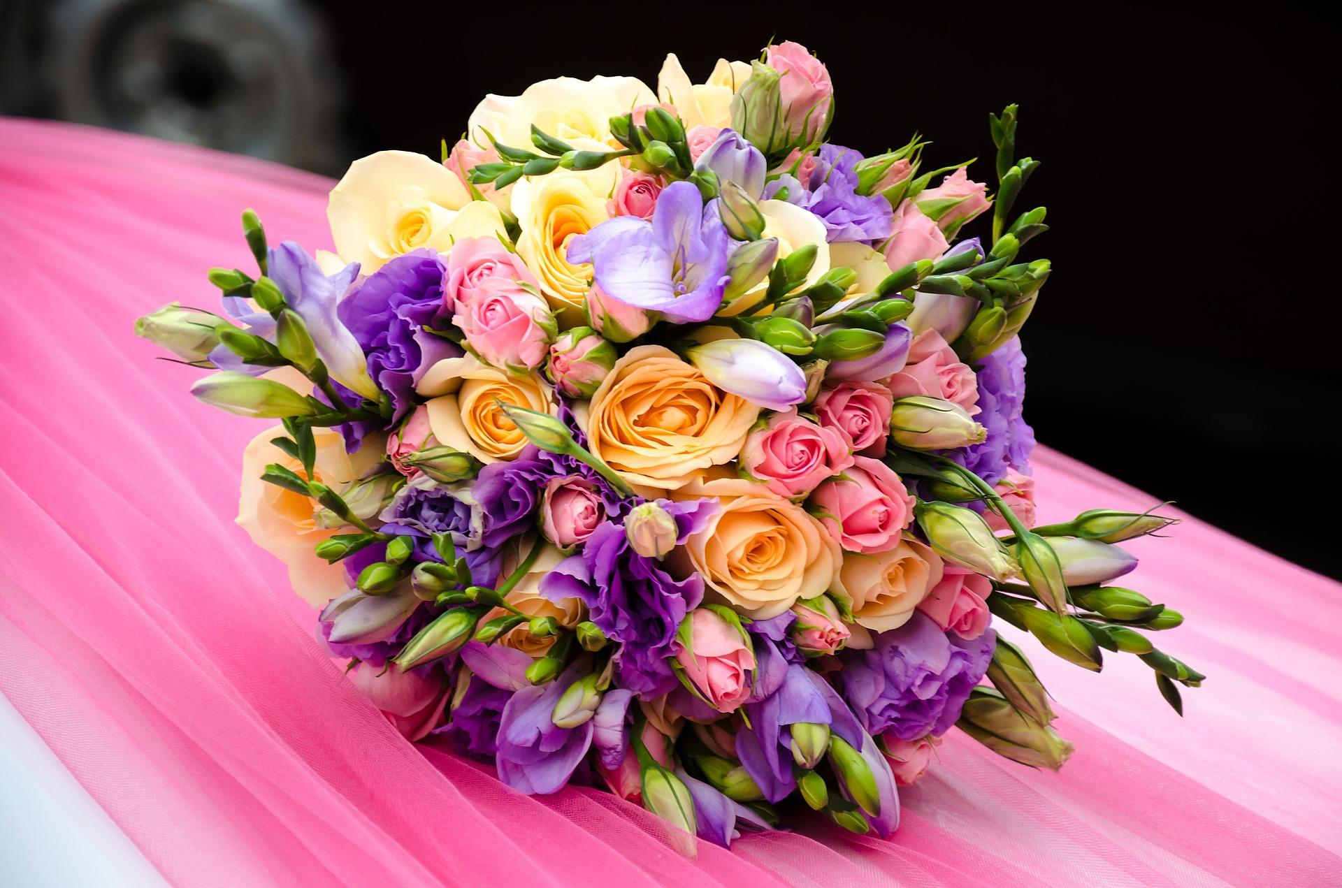 Blumen Hasenhütl News