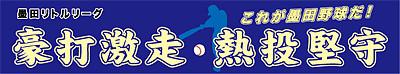 野球,デザイン,ソフトボール,横断幕