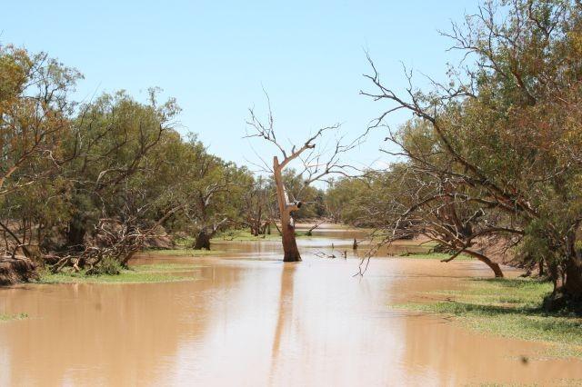 Fluss ausnahmsweise mal mit Wasser