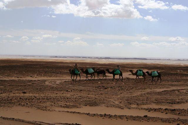 schwarze Wüste