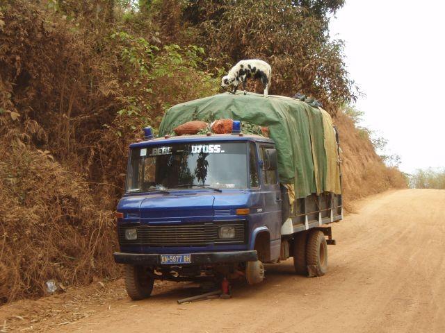 Transport in luftiger Höhe
