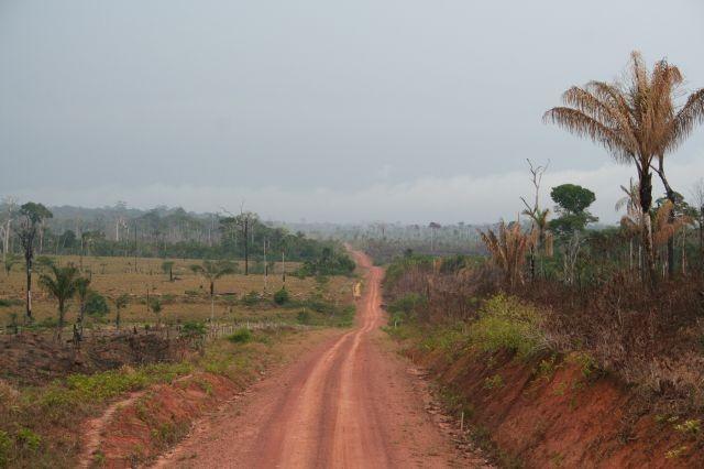 Kahlschlag im Amazonas