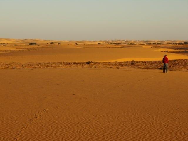 Juppis Spuren im Sand