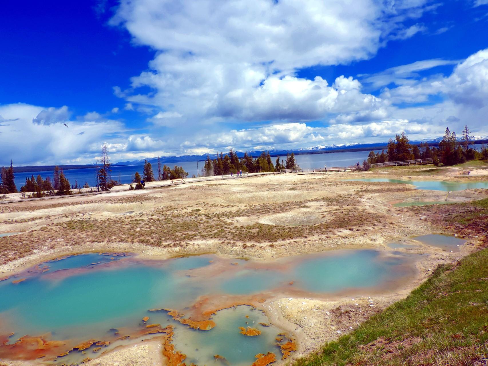 Geysire im Yellowstone N.P.
