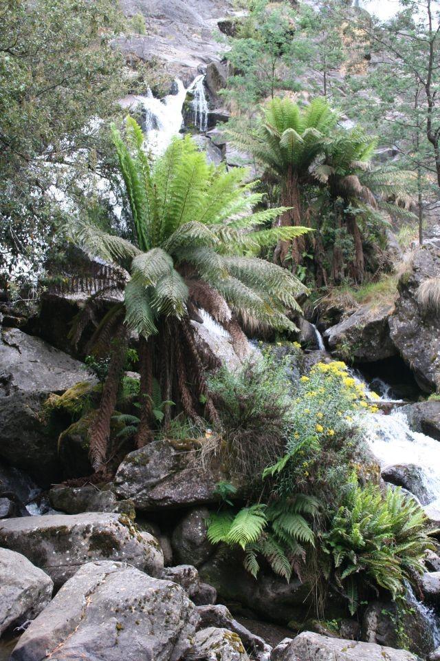 St. Columba Falls