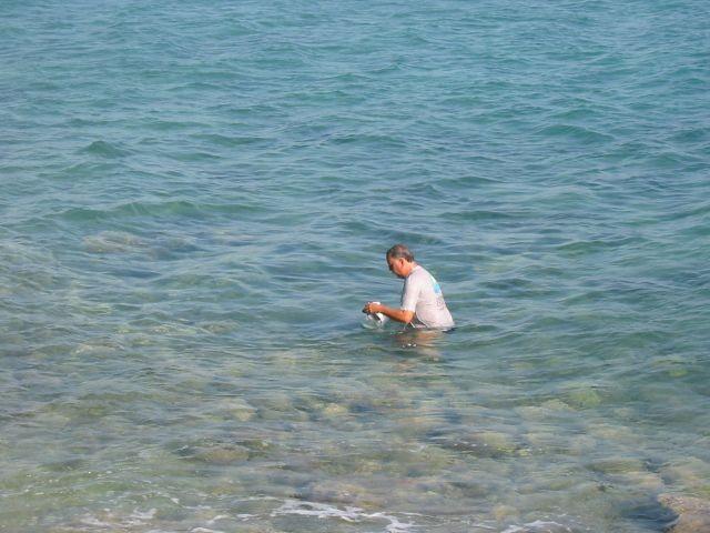 Fischsäuberung