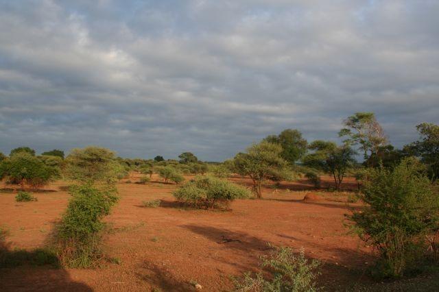 Eindruck von Simbabwe