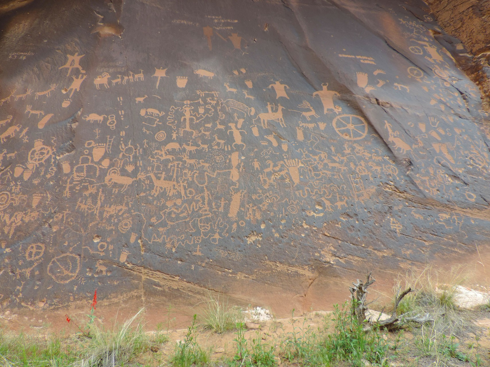 Newspaper Rock  im Canyonlands N.P.
