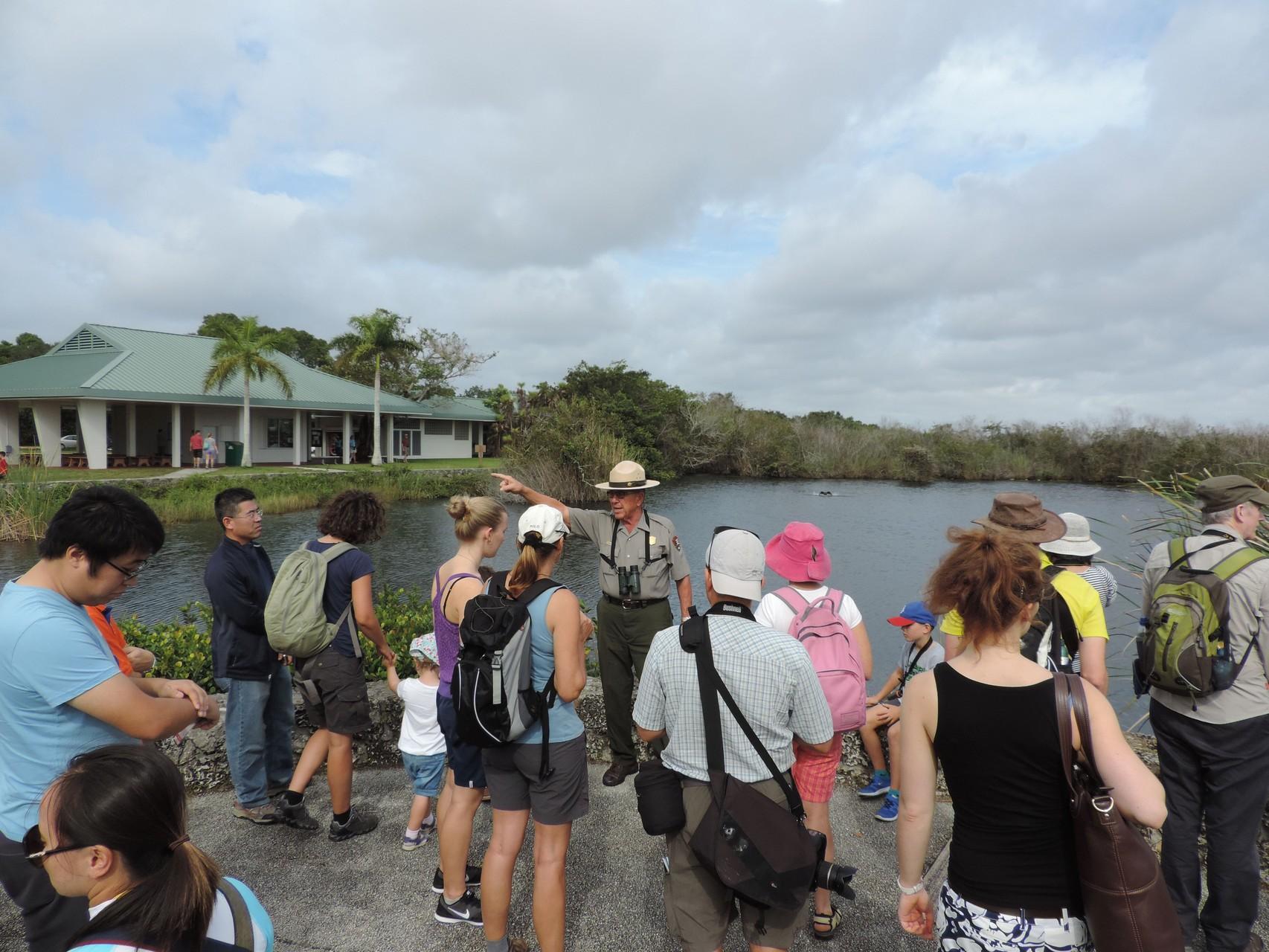 Lehrstunde in den Everglades