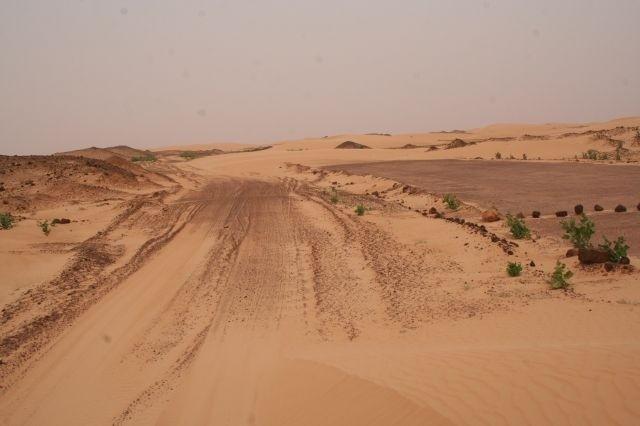 die Dünen erobern den Asphalt zurück