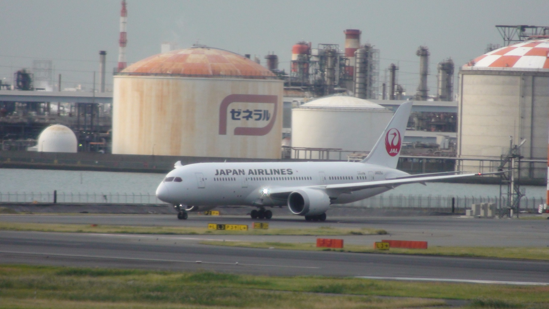 JAL787-8