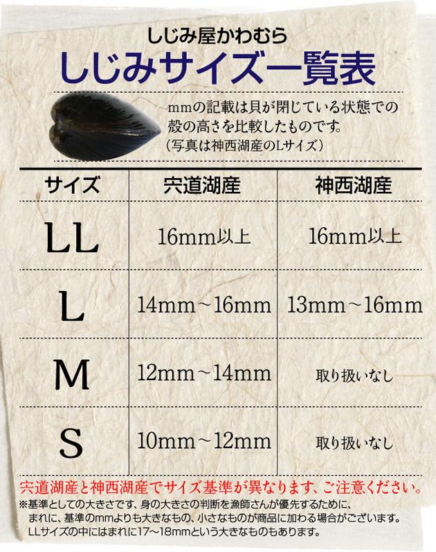 しじみサイズ一覧表 mmの記載は貝が閉じている状態での殻の高さを比較したものです。
