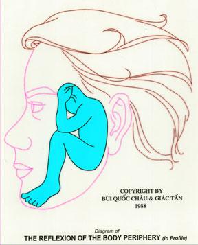 Dien Chan réflexologie schéma de Rodin sur le visage