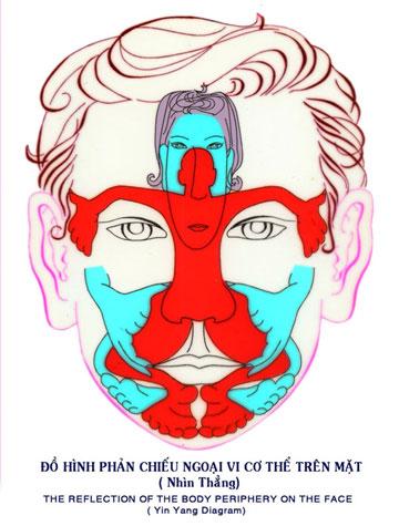 Dien Chan réflexologie : Corps Yin et Yang sur le visage