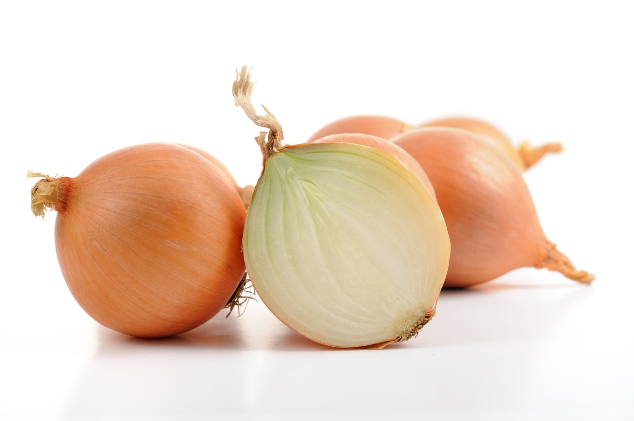 Zwiebel, Kräuter und sonstige frische Grundnahrungsmittel