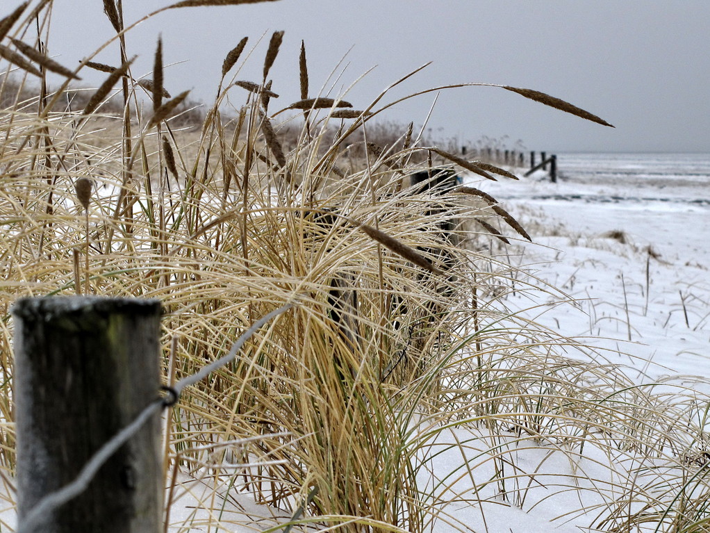 Winter am Strand