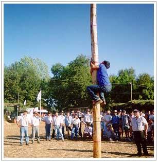 Juegos Tradicionales Pagina Web De Efedixaxor