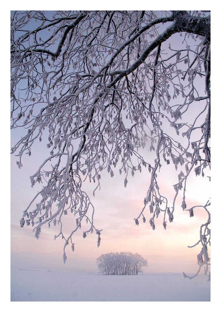 47 Winterabend