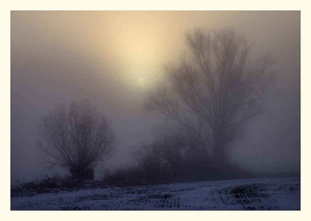 41 Morgenzwielicht