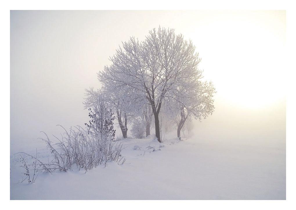 42 Winterlicht