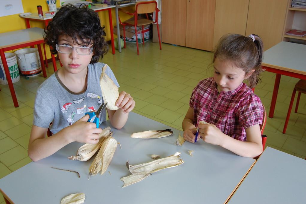 Per prima cosa abbiamo tagliato le brattee a forma di petalo.