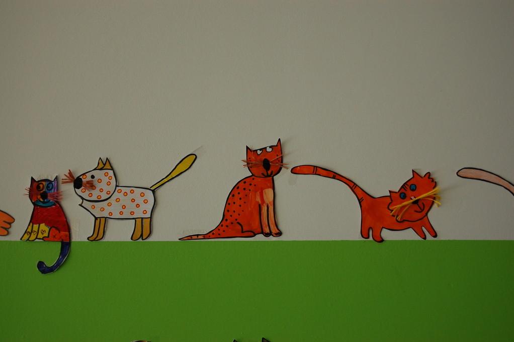 I gattini passeggiano per tutta la scuola !