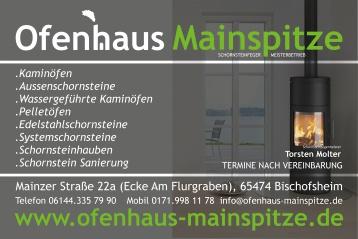 Farbiger Aussenschornstein - Edelstahlschornstein in RAL Farben - Schornstein indidividuell an die Farbe der Hauswand angepasst!