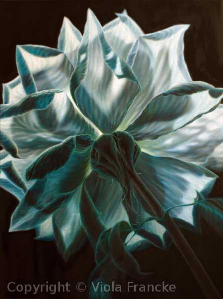 'Polarstern' - 80 x 60 cm