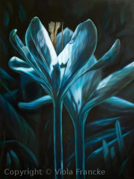 'Nachtleuchten' - 80 x 60 cm